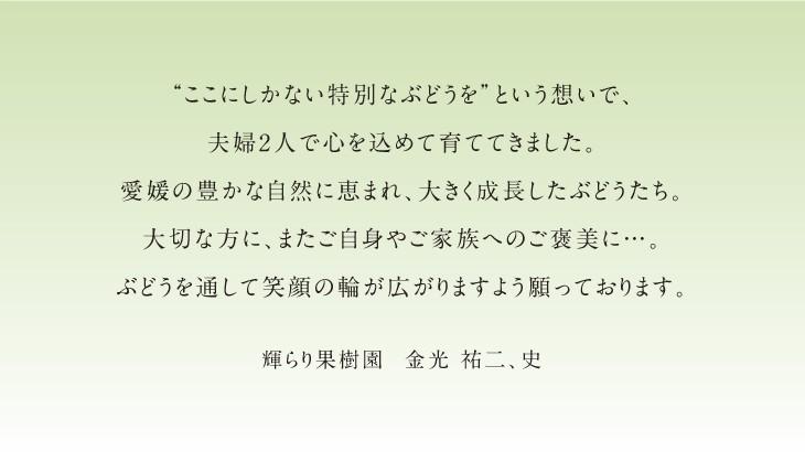 商品説明8