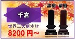 千倉 黒檀 紫檀 POP