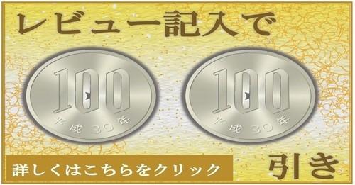 レビュー記入で200円引き