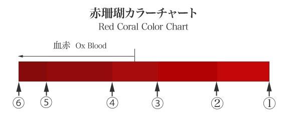珊瑚チャート