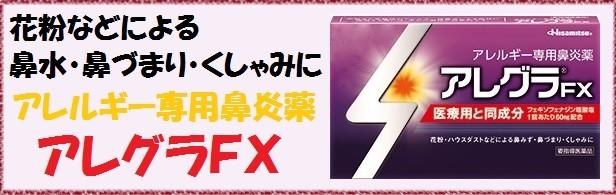 アレグラFX28T(サイドナビ)