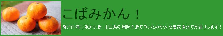 山口県の周防大島で作ったみかんを農家直送でお届けします!