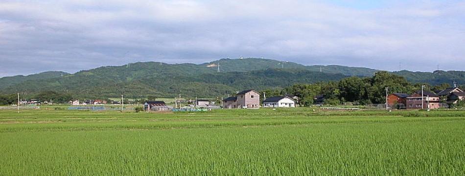 弘宝米の中西農場