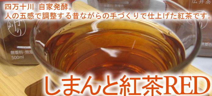 四万十紅茶