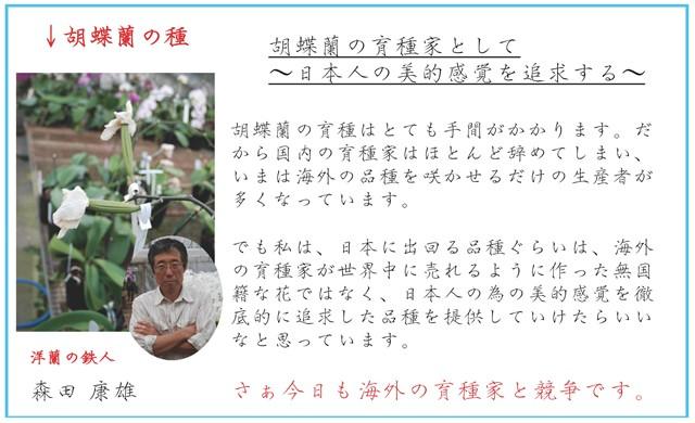 胡蝶蘭の育種家として〜日本人の美的感覚を追求する〜胡蝶蘭の育種はとても手間がかかります。だから国内の育種家はほとんど辞めてしまい、いまは海外の品種を買って咲かせるだけの生産者がほとんどです。でも私は、日本に出回る品種ぐらいは、海外の育種家が世界中に売れるように作った無国籍な花ではなく、日本人の為の美的感覚を徹底的に追求した品種を提供していけたらいいなと思っています。さぁ今日も海外の育種家と競争です。