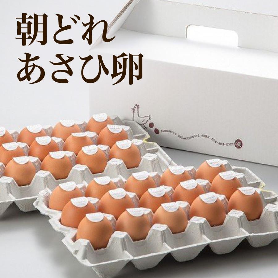 朝どれあさひ卵