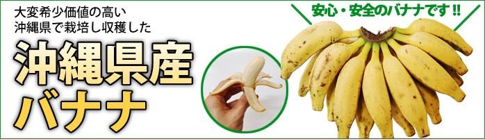 南城市産国産バナナ