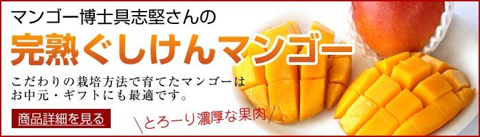 ぐしけんマンゴー