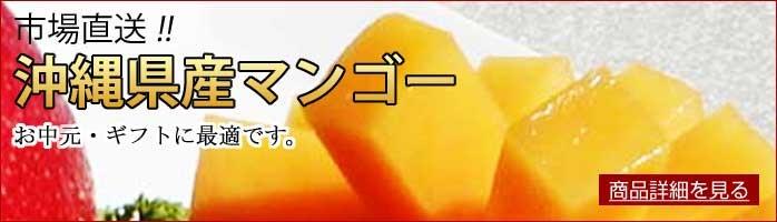 沖縄県産市場直送マンゴー