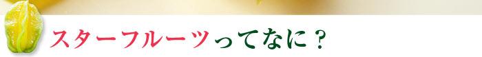 沖縄南風原産 スターフルーツ
