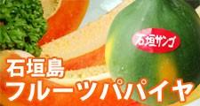 石垣島フルーツパパイヤ