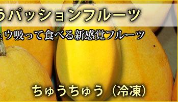 ちゅうちゅうパッションフルーツ(冷凍)