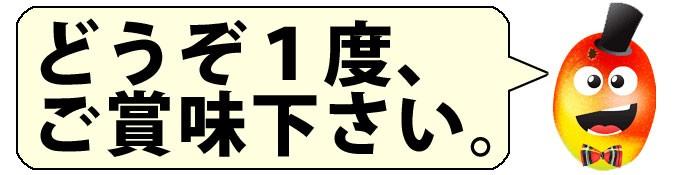 沖縄県産 訳あり マンゴー