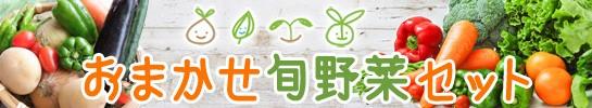 おまかせ旬野菜セット