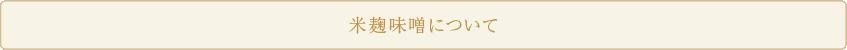 米麹味噌について