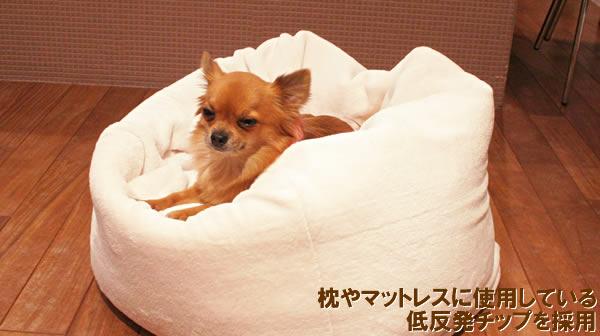 枕やマットレスに使用している低反発チップを採用。マシュマロクッション 使用イメージ(モデル犬 チワワ、体重2.3kg)