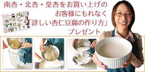 南杏・北杏・皇杏をお買い上げのお客様にもれなく「詳しい杏仁豆腐の作り方」プレゼント