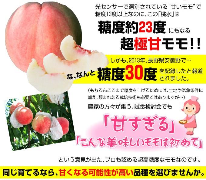 桃 苗木 とうすい 甘い桃