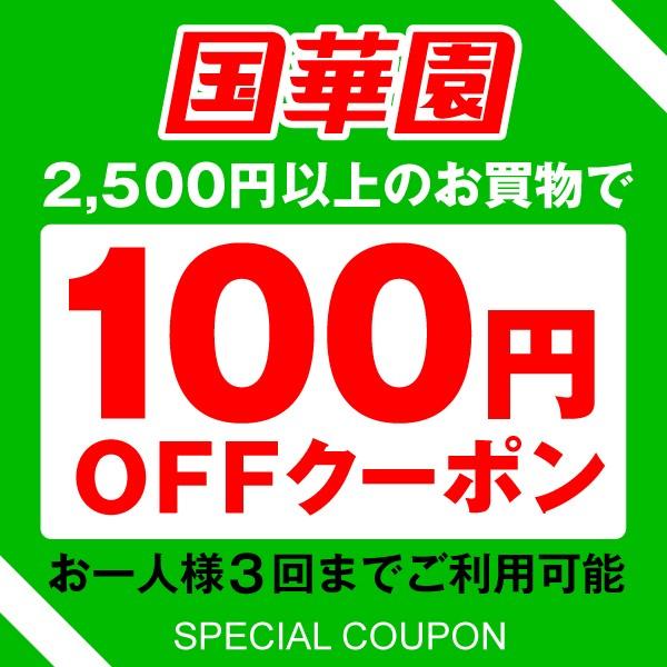 【国華園】2500円以上ご注文で100円OFFクーポン 3回使用可能 全商品対象