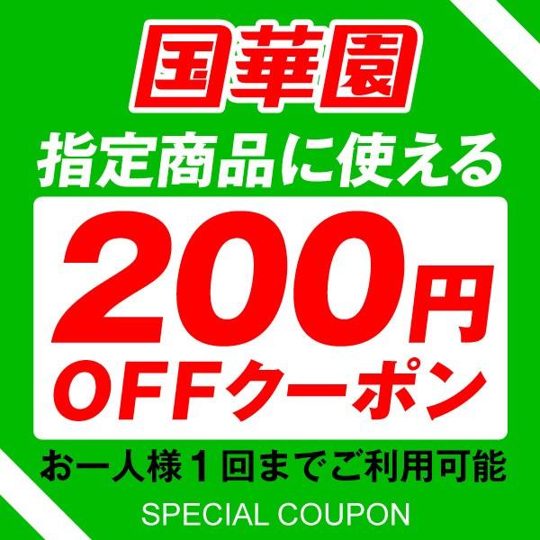 ドライブレコーダー200円引きクーポン 【国華園】