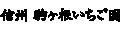 信州駒ヶ根いちご園 ロゴ