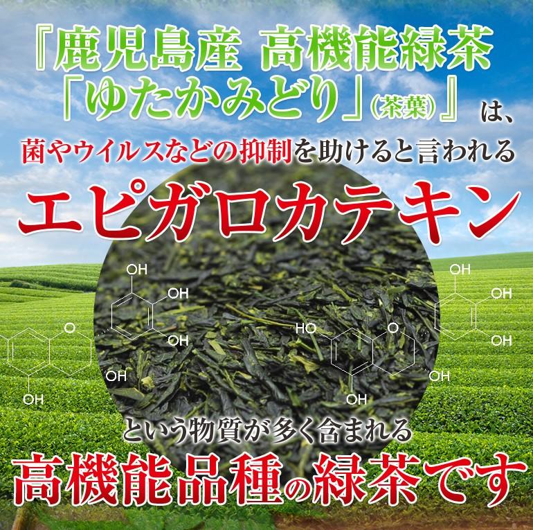 鹿児島県産 高機能緑茶「ゆたかみどり」は、菌やウイルスなどの抑制を助けると言われるエピガロカテキンという物質が多く含まれる高機能品種の緑茶です