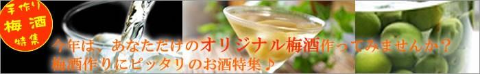 梅酒用のお酒特集