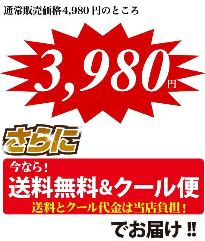 3980焼肉セット