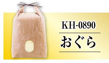 雲龍和紙KH-0890おぐら
