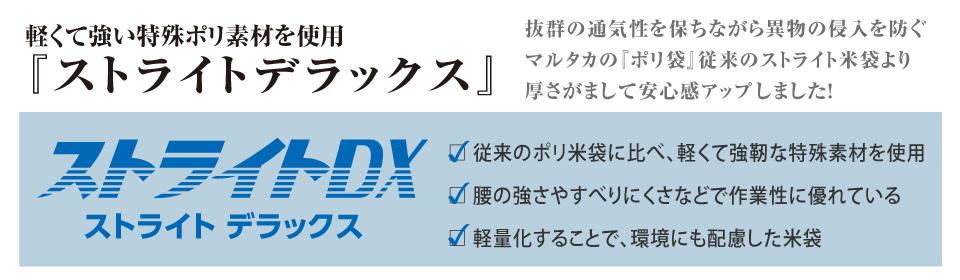 ストライトDX