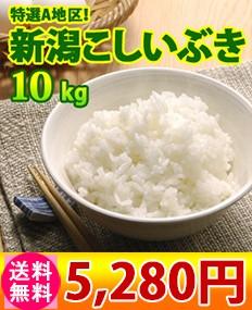 新潟県産こしいぶき10kg