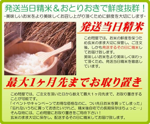 発送当日精米&選べる荷姿で鮮度抜群!   -美味しいお米をより美味しくお召し上がり頂くために鮮度を大切にします-   発送当日精米   こめ問屋では、お米の鮮度を保つため玄米のまま大切に保管し、ご注文後しかも発送するその日に精米してお届けいたします。   美味しいお米をより美味しく味わって頂くため、発送当日精米を徹底しています。   最大一カ月先までお取り置き   こめ問屋では、ご注文頂いた日から数えて最大一カ月先まで、お取り置きすることが可能です。   「イベントやキャンペーンでお得な価格なのに、つい先日お米を買ってしまった」   そんな時には、こめ問屋にお取り置きをご用命下さい!   玄米のまま大切に保管し、配送するその日に精米してお届け致します。」