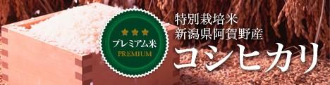 新潟県阿賀野産コシヒカリ