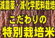 減農薬・減化学肥料栽培 こだわりの特別栽培米