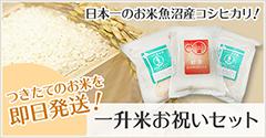 つきたてのお米を即日発送!日本一のお米魚沼産コシヒカリ!一升米お祝いセット