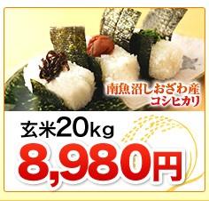 新潟県南魚沼しおざわ産コシヒカリ玄米20kg
