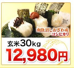 新潟県南魚沼しおざわ産コシヒカリ玄米30kg