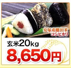 新潟県安塚産棚田米コシヒカリ玄米20kg