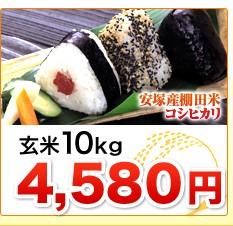 新潟県安塚産棚田米コシヒカリ玄米10kg