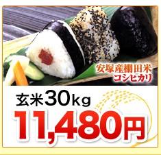 新潟県安塚産棚田米コシヒカリ玄米30kg