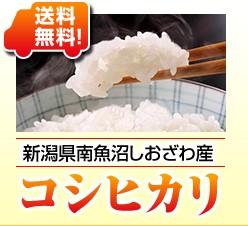 新潟県南魚沼しおざわ産コシヒカリ