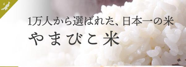 やまびこ米