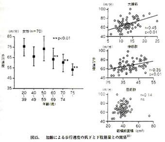 加齢による歩行速度の低下と下肢筋量との関係を示すグラフ