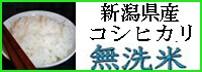 無洗米(コシヒカリ)