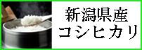コシヒカリ(白米・分づき)