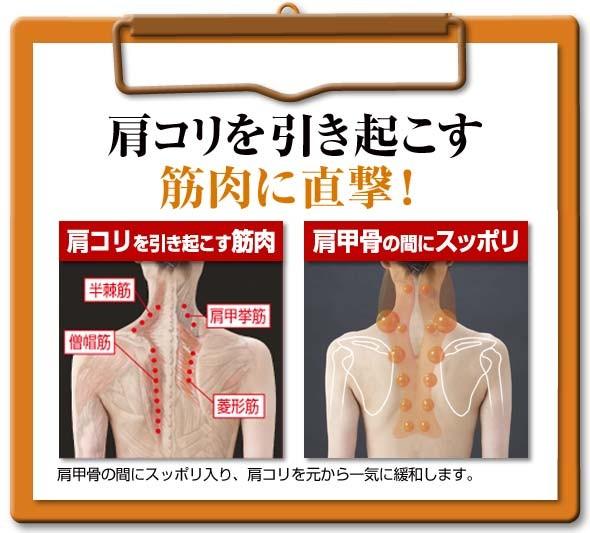 肩コリを引き起こす筋肉に直撃 肩コリを引き起こす筋肉 肩甲骨の間にスッポリ 肩甲骨の間にスッポリ入り、肩コリを元から一気に緩和します。半棘筋 僧帽筋 肩甲挙筋 菱形筋