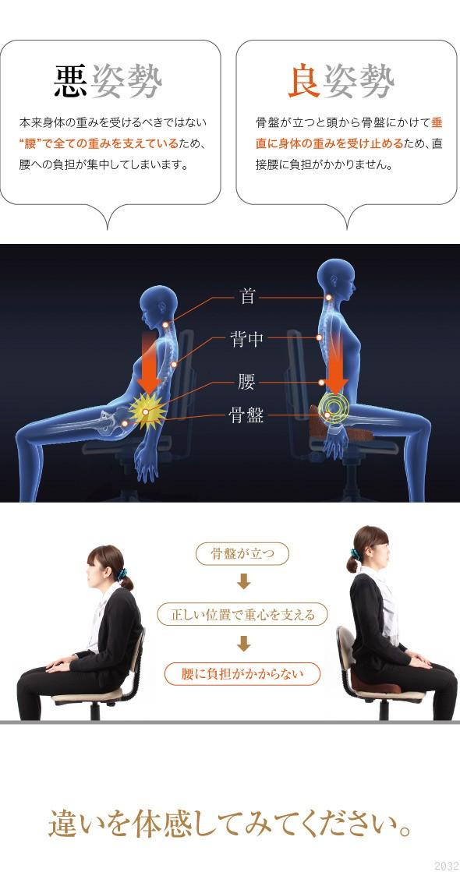 悪姿勢、本来身体の重みを受けるべきではない腰で全ての重みを支えているため、腰への負担が集中しています。良姿勢。骨盤が立つと頭から骨盤にかけて垂直に身体の重みを受け止めるため、直接腰に負担がかかりません。首・背中・腰・骨盤。骨盤が立つ、正しい位置で重心を支える、腰に負担がかからない。違いを体験してみてください