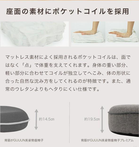 背筋がGUUUN! 美姿勢座椅子 プレミアム 座面にポケットコイル採用