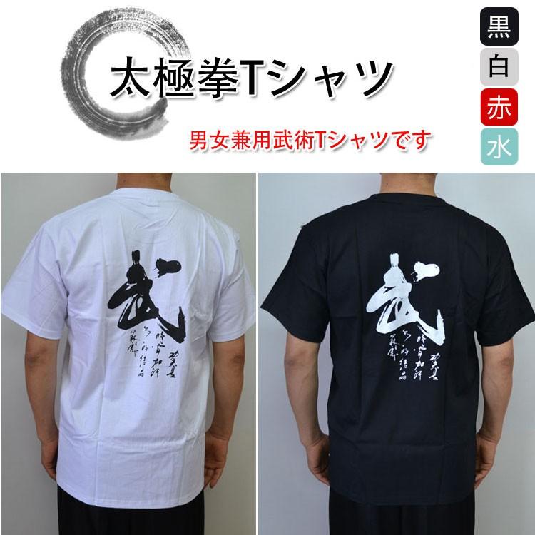 太極拳Tシャツ〜武〜