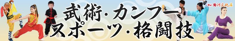 武術・カンフー・格闘技